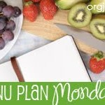 Menu Plan – Meatless Options